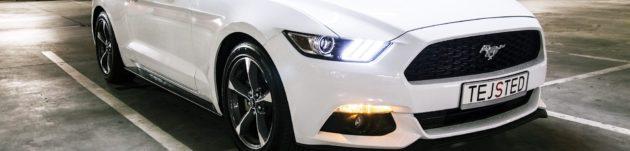 Stypendysta – Mustang 2015